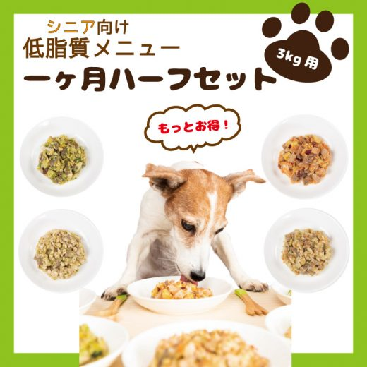 food-service15