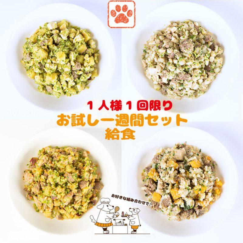food-service10