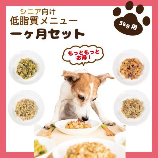 food-service17