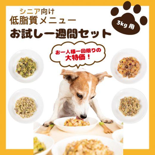 food-service13