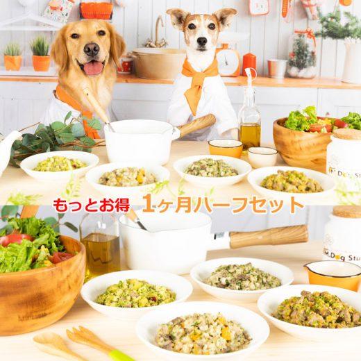 food-service03