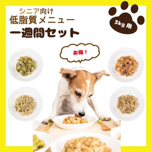 food-service19